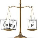 calcium,magnesium and phosphorus