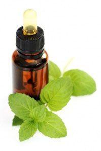 lavender oil against headache
