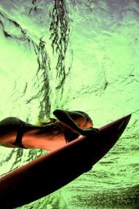 spirulina and sea